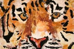 Tigre | 2008